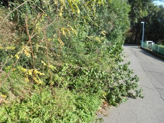 Strada di Montevile a Ponte San Giovanni una gincana di strettoie
