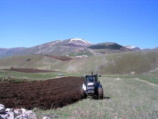 Entro fine settimana comincia semina della lenticchia a Castelluccio