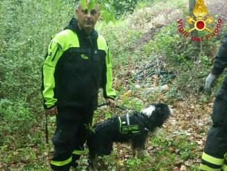 Narni, va a cercare asparagi nel bosco, 60enne trovato morto