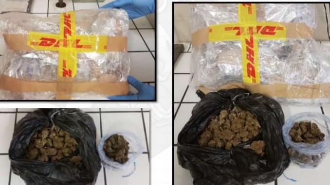 Droga tra giovani, avevano mezzo chilo di marijuana in garage, arrestati