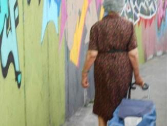 Sciame di vespe assale anziana signora a Ponte San Giovanni