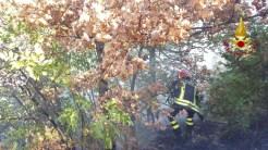 Incendi a Gualdo Tadino, diverse squadre dei vigili del fuoco a lavoro
