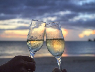 Calici di stelle un successo vino importante promozione territorio