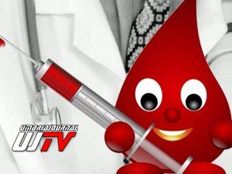 Per ogni nuovo donatore di sangue sarà piantato un albero