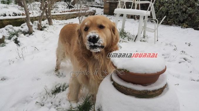 Umbria sarà ancora gelata l'1 marzo, dal 2 temperature in aumento