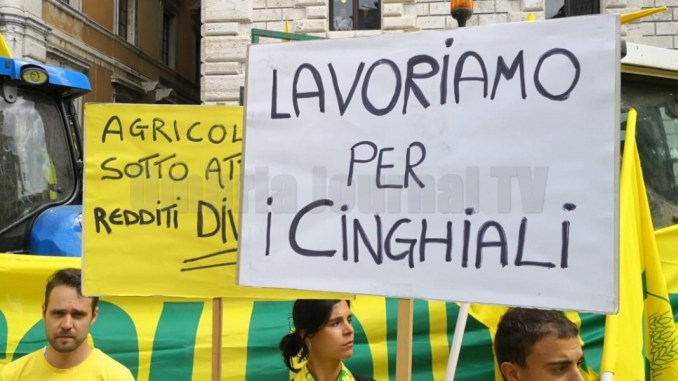 Lavoriamo per i cinghiali, agricoltori umbri con i trattori in piazza Italia a Perugia