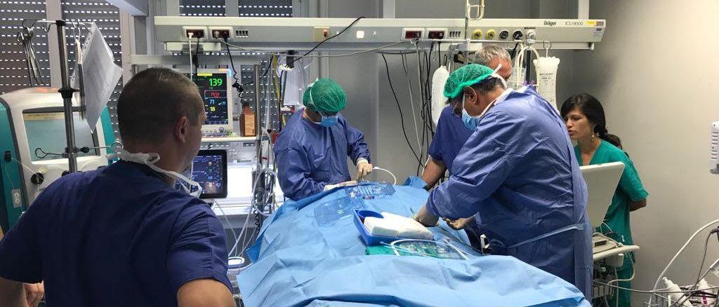 Legionellosi comunitaria, a Terni donna con gravissima polmonite viva grazie all'ECMO