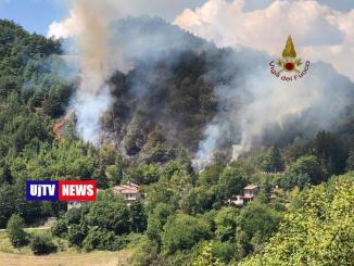 Un milione e 350 mila euro in tre anni contro incendi nei boschi