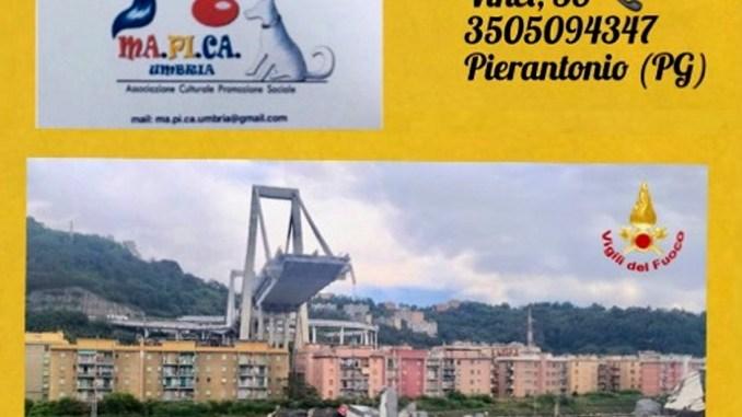 Crollo ponte Morandi, Mapica Umbria mette a disposizione ufficio legale
