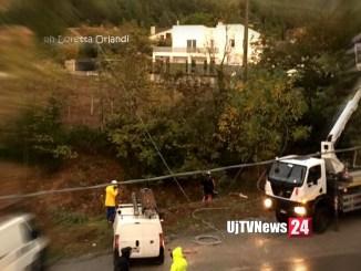 Maltempo a Foligno pino si schianta e trancia fili dell'energia elettrica