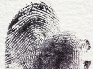 Impronte digitali dipendenti pubblici, Silvia Pansolini, ma basta per piacere!