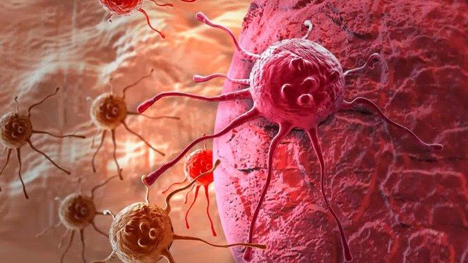 Professoressa Arianna Calistri e i virus ammazza tumori, virus oncolitici, a Orvieto