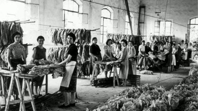 I racconti , ex tabacchificio di Perugia,le tabacchine, la filovia e la storia di Marina