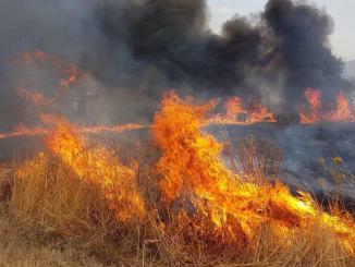 Arrestato pensionato piromane, appiccava incendi nei boschi nell'Amerino