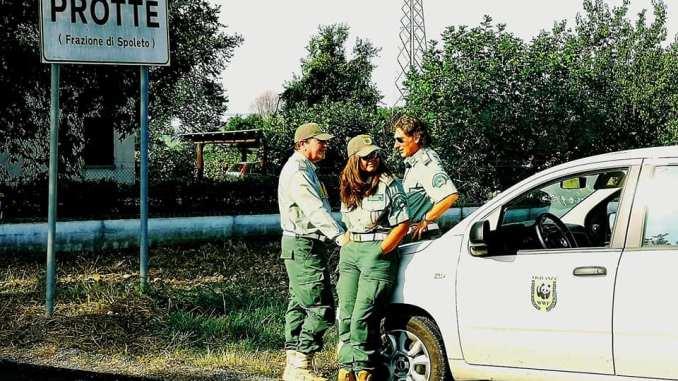 Arrivano guardie WWF e loro si danno alla fuga tra i girasoli
