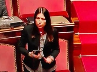 Nomina Cantone, le congratulazioni della senatrice Ginetti (Italia Viva)