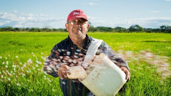 Manodopera agricola, agevolare assunzioni con piattaforme telematiche