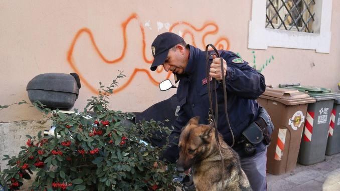 Enduro, pastore tedesco poliziotto, scova due spacciatori, arresto e denuncia