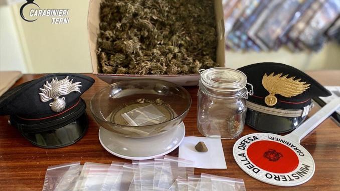 Denunciato in 26enne per droga a Terni, in casa 16 piante di canapa indiana