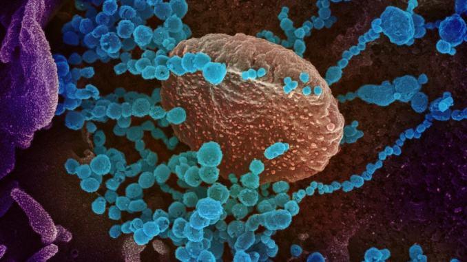 Epidemia Covid-19 in peggioramento, Rezza, necessario prendere misure