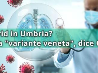 """Caossanità, Cgil Perugia: paghiamo i dannidella """"variante veneta"""""""