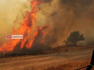 Cipro: 4 morti in maxi incendio, per governo è il 'peggiore della storia'
