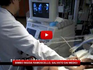 Firenze, estratto il ramoscello dai polmoni del bambino di 14 mesi