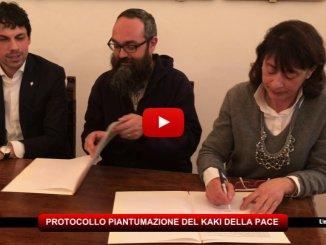 Kaki della Pace, firmato stamattina il protocollo d'intesa