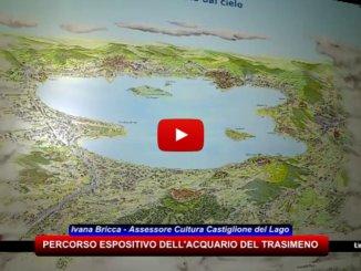Presentato il Percorso Espositivo dell'Acquario del Trasimeno