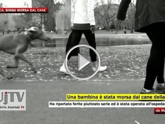 Gravi ferite per bimba morsa da cane, operata a Foligno