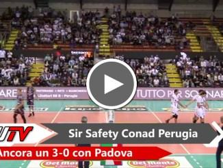 Sir Safety, ancora 3-0 con Padova! Staccato il biglietto per la Final Four