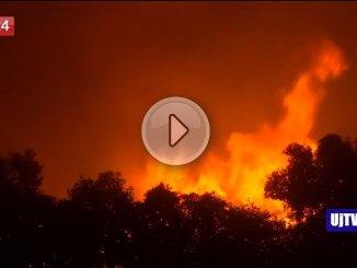 Grecia, incendi vicino ad Atene: 60 morti e oltre 550 feriti