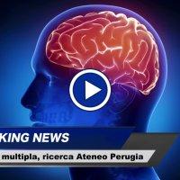 Disfunzioni sinaptiche e cognitive nella sclerosi multipla uno studio italiano a Perugia video dottor salute