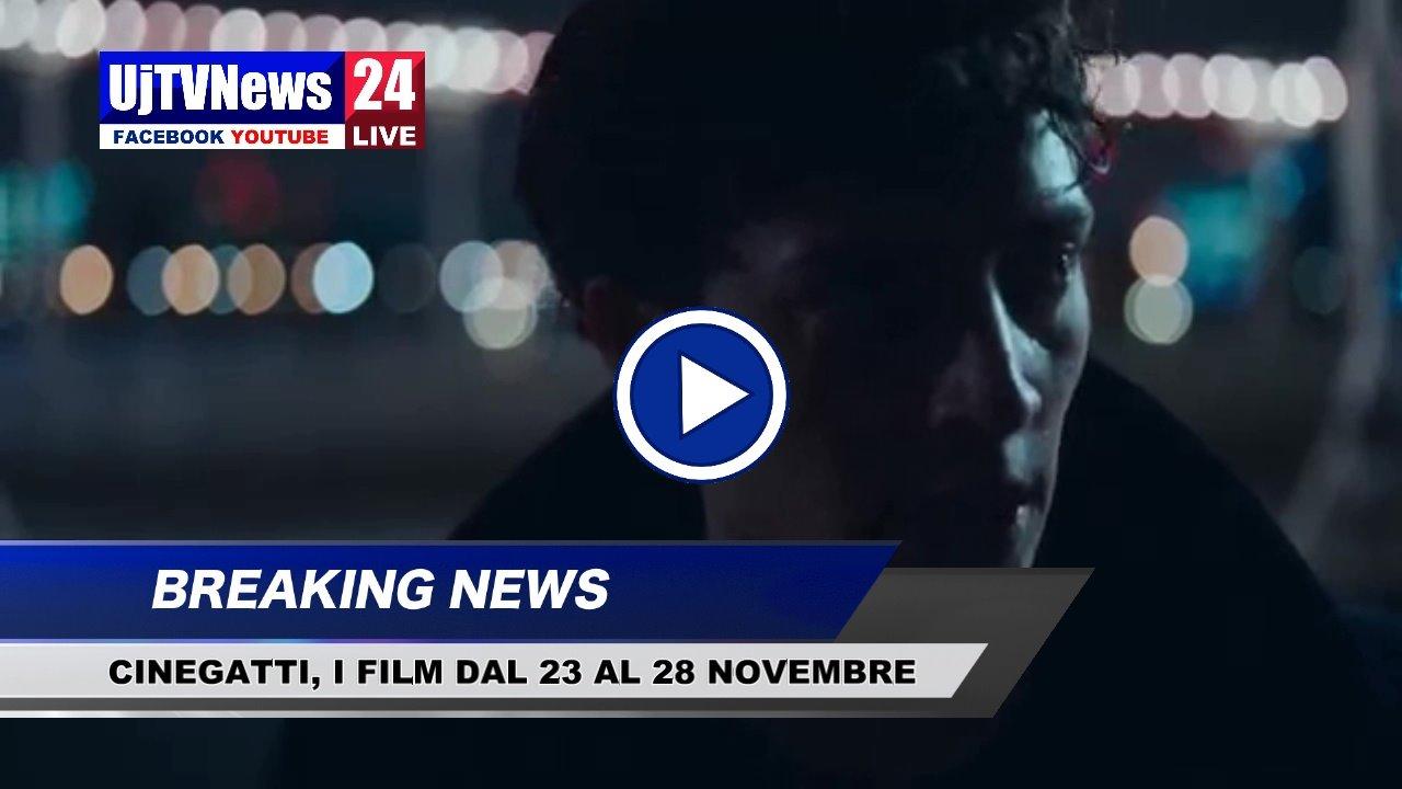 Cinegatti, i film della settimana, dal 23 al 28 novembre 2018