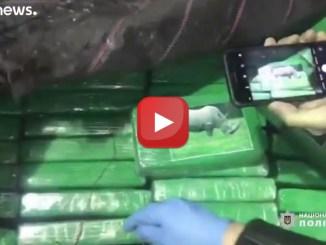 Oltre 250 kg di cocaina nascosti fra le banane