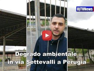 Mercato ortofrutticolo e degrado a Perugia c'è l'amianto la denuncia di Ribecco CasaPound