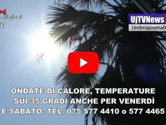 Allarme caldo, temperature sui 35 gradi i numeri da chiamare 075 577 4410 o 577 4465_01