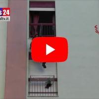 Gattino imprudente precipita dal 6° piano video salvato dai vigili del fuoco