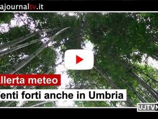 Venti forti anche in Umbria, allerta meteo per martedì e mercoledì