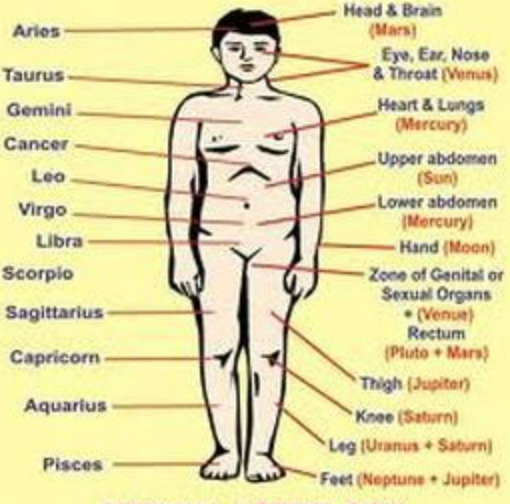 Leo astrology chart image collections free any chart examples leo astrology chart choice image free any chart examples cancer astrology chart images free any chart nvjuhfo Gallery