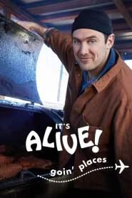 It's Alive: Goin' Places