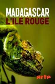Madagascar, l'île rouge : La jungle des lémuriens