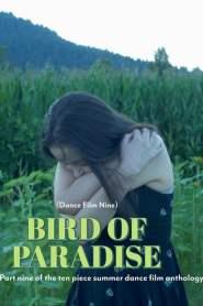 Bird of Paradise – Dance Film Nine