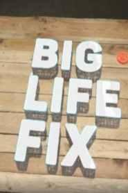 Big Life Fix