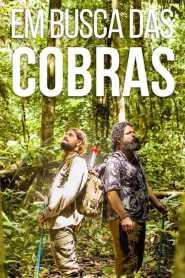 Em Busca das Cobras