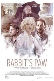 Rabbit Paw