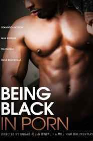 Being Black in Porn