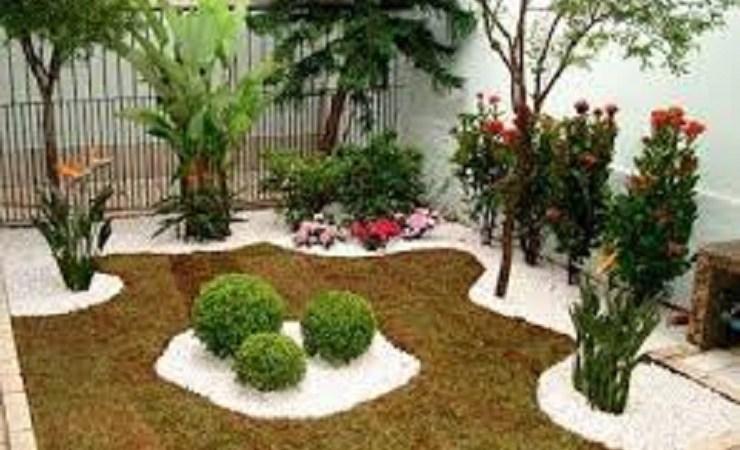 Ideias para um jardim simples e barato no quintal