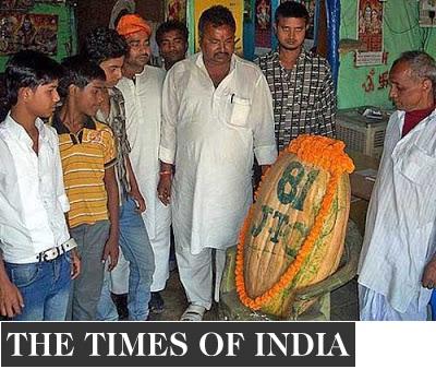 Hindus rezam para abóbora tida como reencarnação de Deus