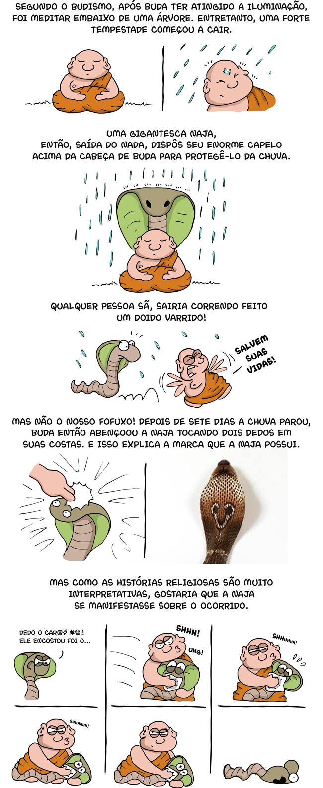 1377 – A explicação religiosa da cobra naja